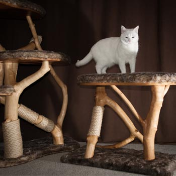 Rustic cat scratching post kitty climber